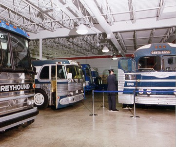 View of several of the buses inside the museum.